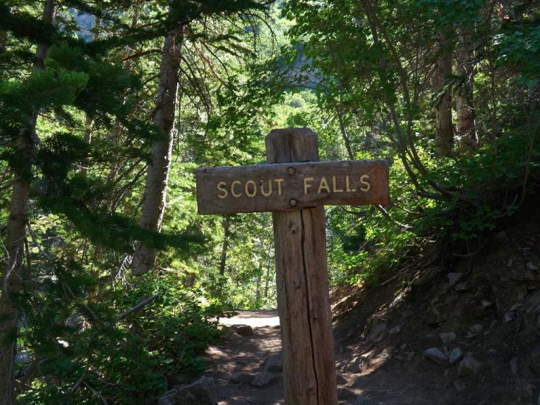 scout falls sign